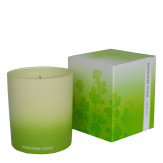 Green Fig Scented Candle