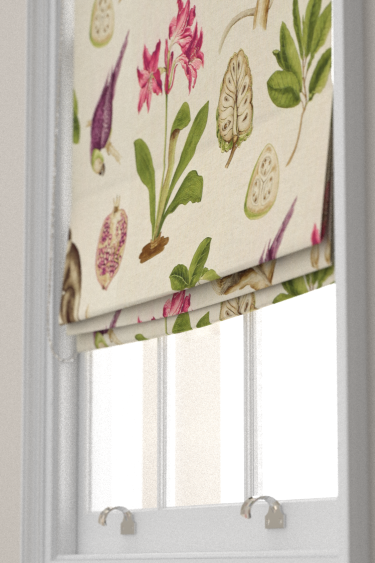 Capuchins Boysenberry Roman Blinds By Sanderson Brewers Home