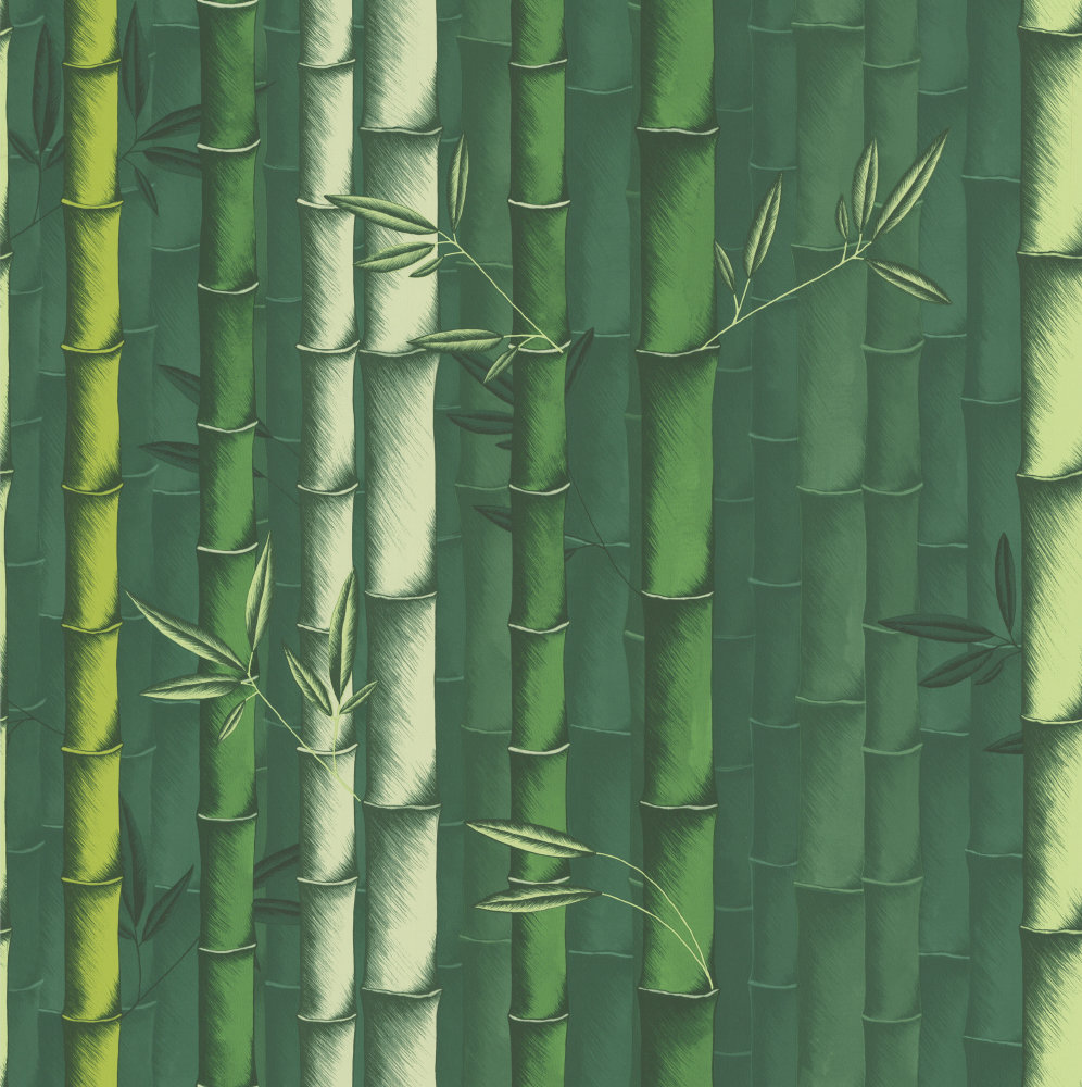 Bamboo Emerald By Osborne Amp Little Wallpaper Brewers Home
